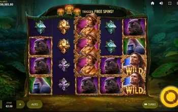 Ga de jungle in met Lord of the Wilds van Red Tiger!